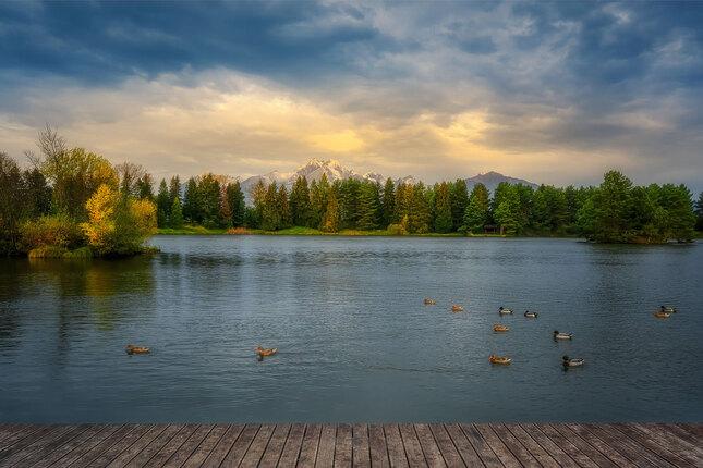 na rybníku
