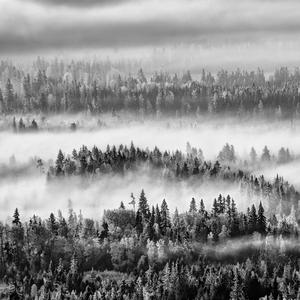 v krajine hmly