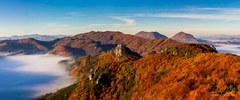 Suloveska panorama