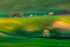 Klenot Jižní Moravy