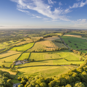 Anglicky vidiek