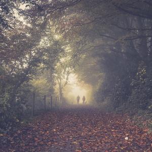 jesenna prechadzka