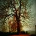 Strom.....
