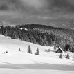 Z Rycierovej hory