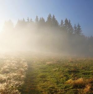 Na hranici svetla a hmly