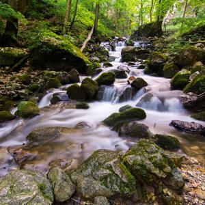 Chotárny potok
