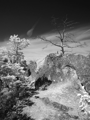Súľovské skaly I.