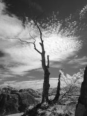 Súľovské skaly II.