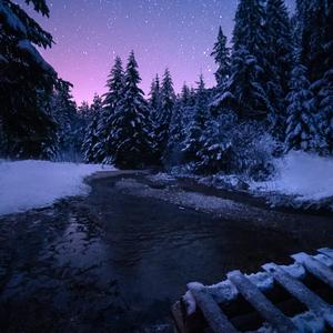 Tichá noc