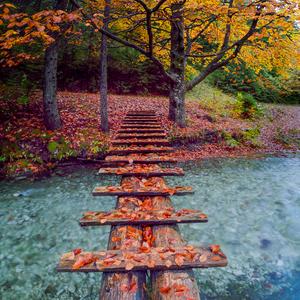 Jesenný mostík