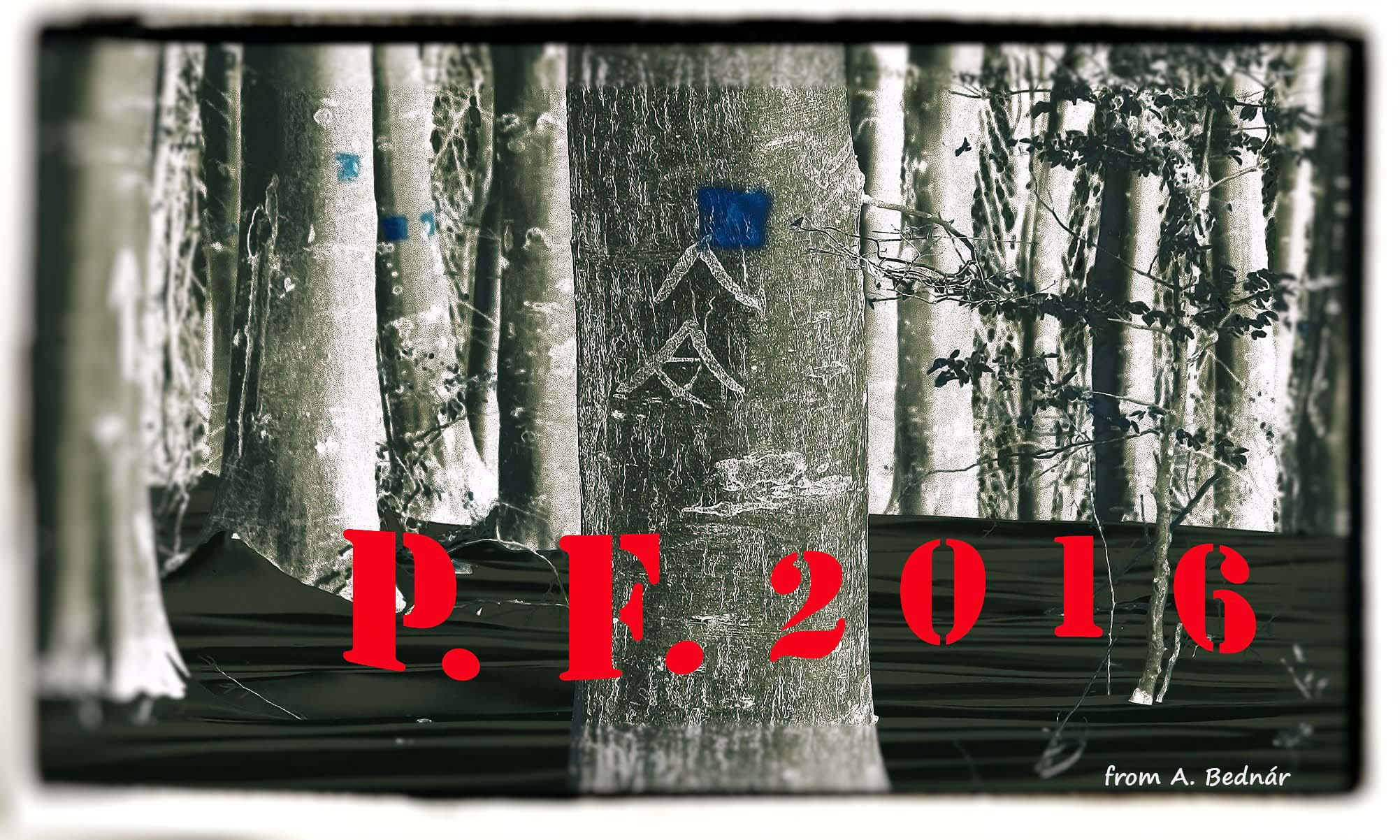P.F. 2016