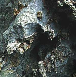 jaskyňka 2