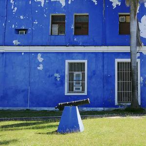 revolúcia v modrom