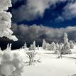 zima na Martinkách
