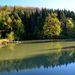Ráno pri rybníku