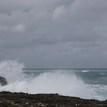 Wild Atlantic