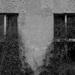 okná3