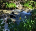 cestou na vodopád skok