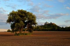 Krajina s hradom II