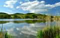 Pezinský rybník