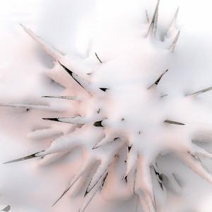 explozívna