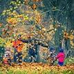 Jesenne hry