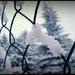 magic snow:)