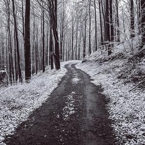 Novembrová prechádzka