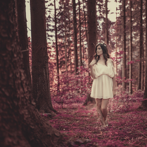 Lesná Víla
