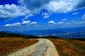 Cesta z Martinských Holí
