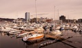 Lodenica v meste Bodø