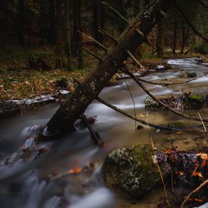Pri Štrážovskom potoku
