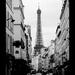 Paris VIII.