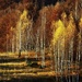 Keď jeseň maluje