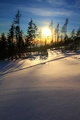 Snehová pláň