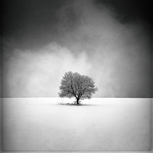 čiernobiela samota