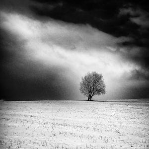 .. samota ....