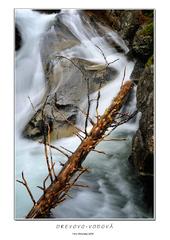 Drevovo-vodová