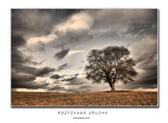 Rozfúkaná obloha