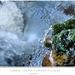 Ľadovo-vodové farebné tajomno