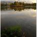 Štrbská rybníkofka