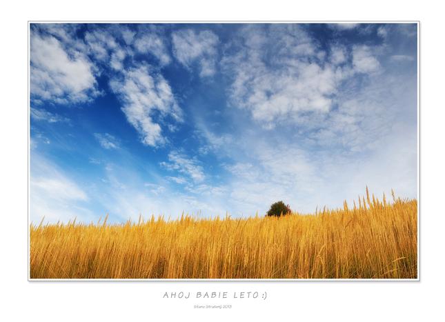 Ahoj babie leto  ) - Fotografia - Fotogaléria  bb5b46ac7d9