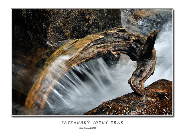 Tatranský vodný drak - Fotografia - Fotogaléria  64d1b343b48