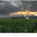 Búrkový máj - v stodole raj