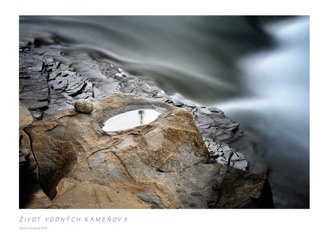 Život vodných kameňov II - Fotografia - Fotogaléria  030b2ed4b5d