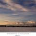 Stromoradie a rad kopcov