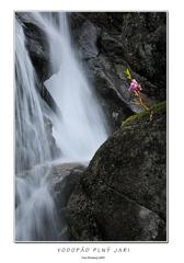 Vodopád plný jari