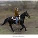 Po nábreží koník beží...