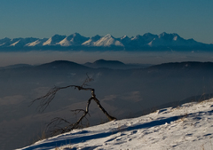 Tatry z Kojšovskej hole