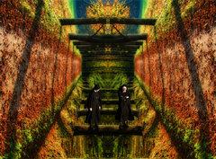 Acid trip a dilema sestry Agáty